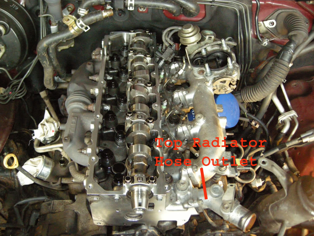 DSCN8135copy.jpg