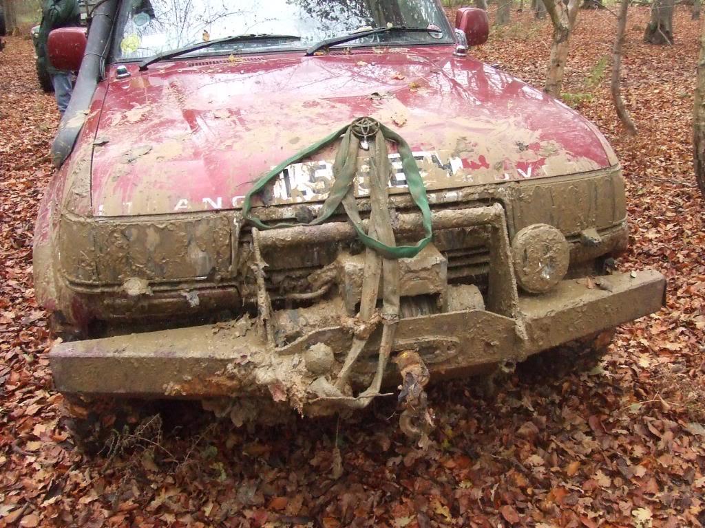 Muddy-1.jpg