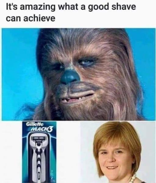 Sturgeon.jpg